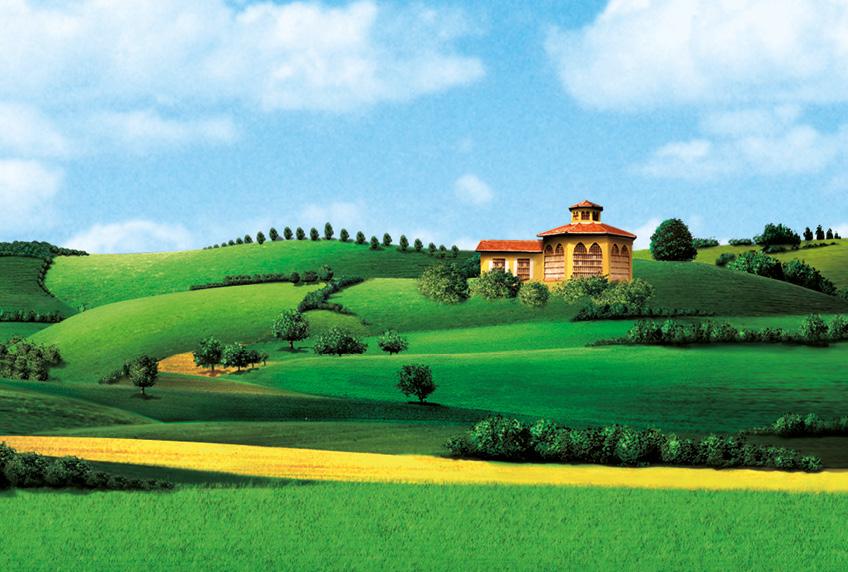 Parmareggio - Parmigiano Reggiano